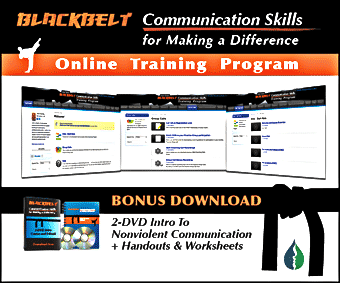 Blackbelt Communication Skills Training Program product art