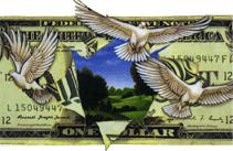 Dollar doves